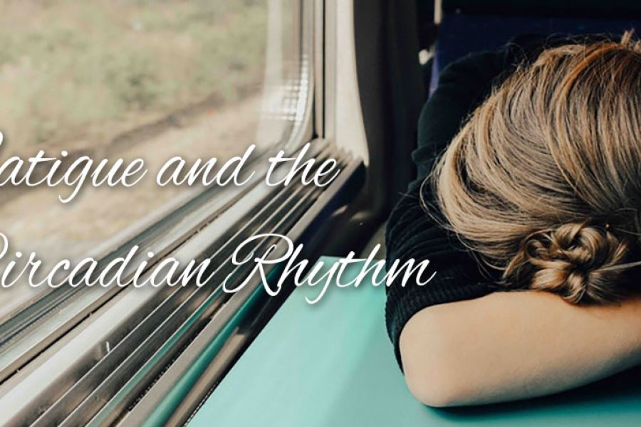 Fatigue and the Circadian Rhythm
