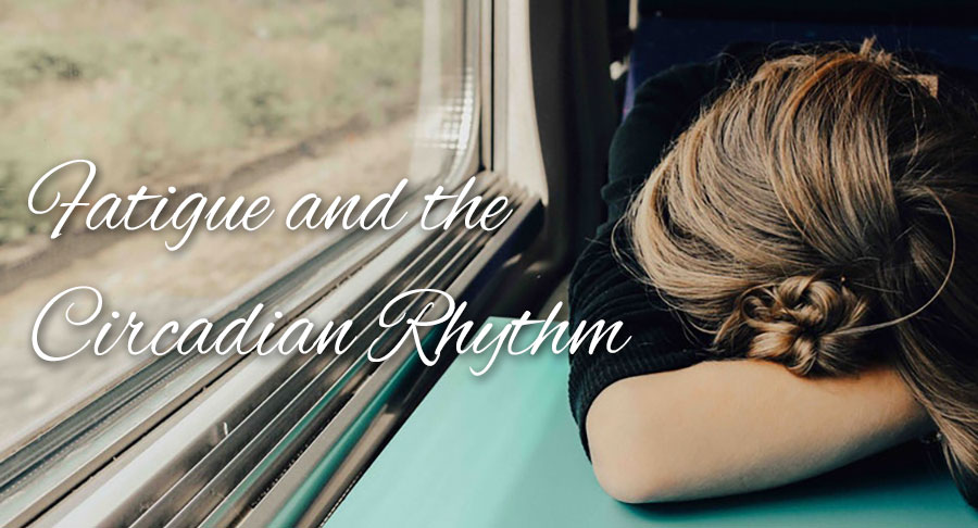 Fatigue and the Circadian Rhythm