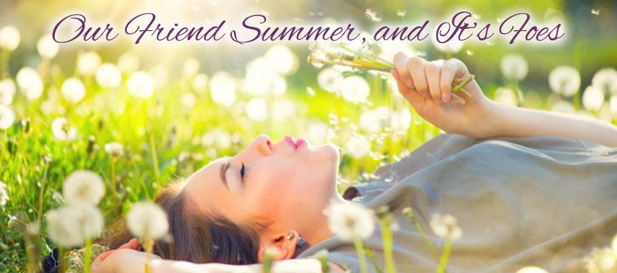 Our Friend Summer